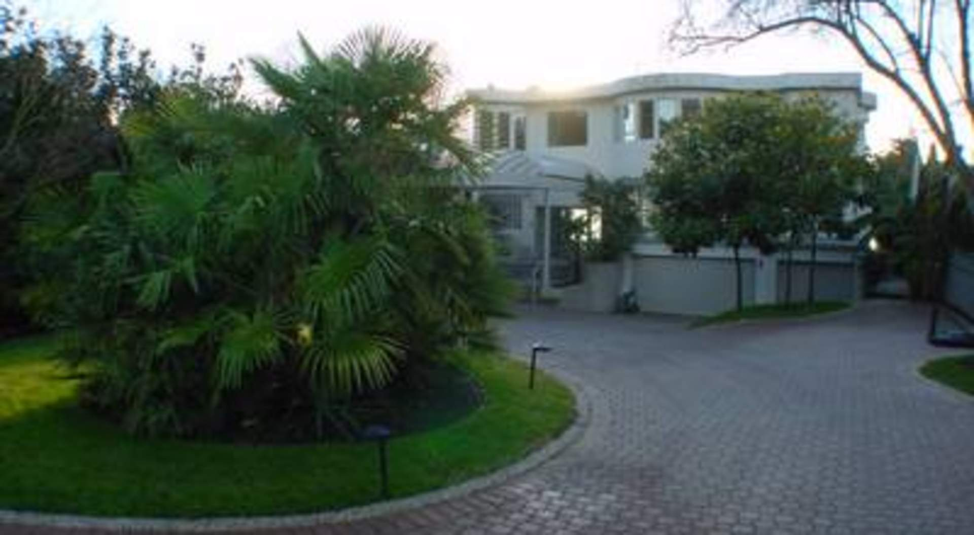 Mature Level Garden with Palm Trees