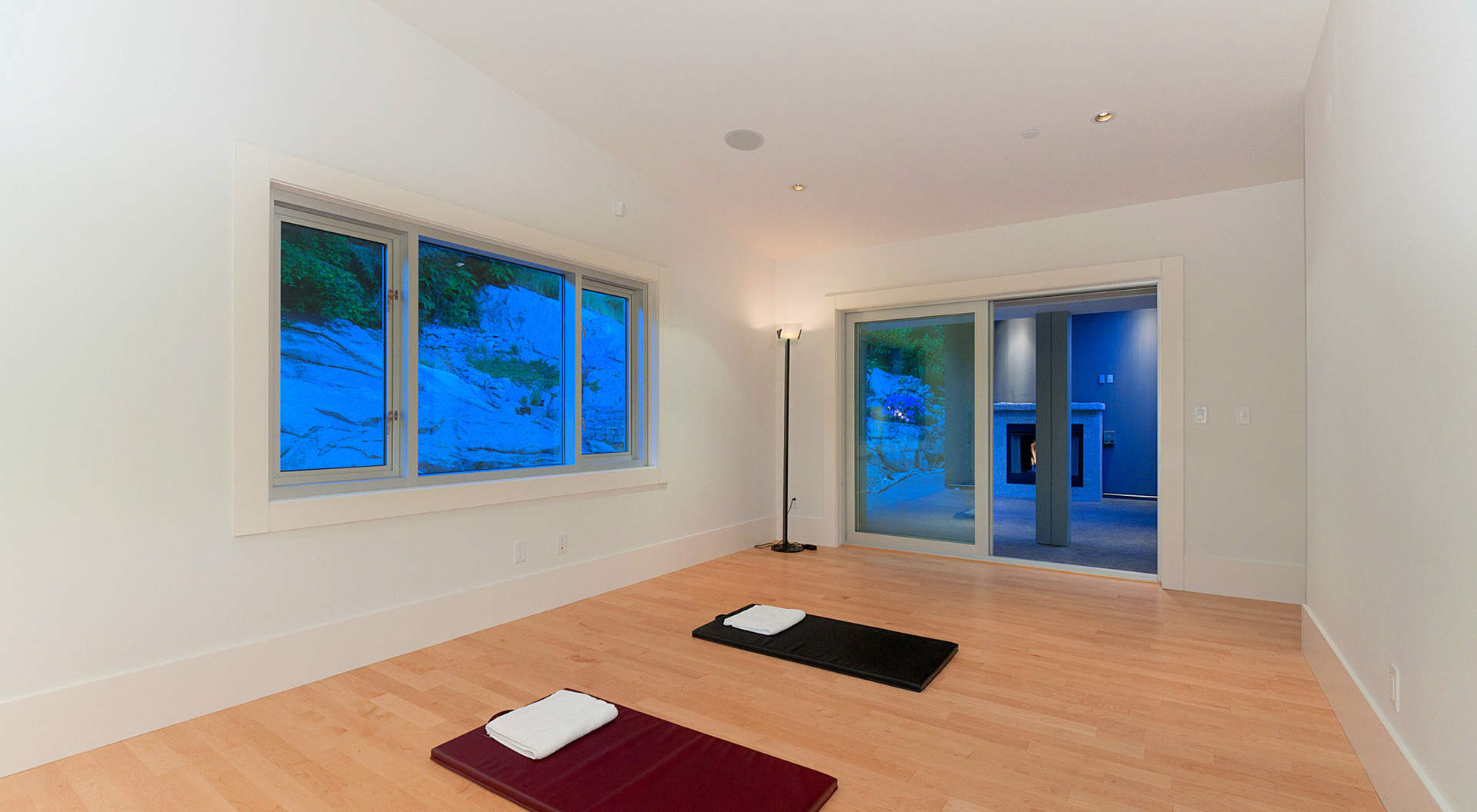 Gym/Yoga/ Lounge Room